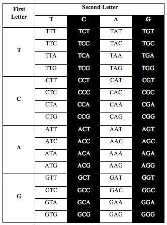 tcag_symmetry2