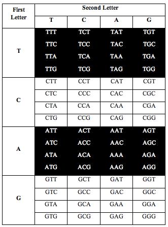 tcag_symmetry5