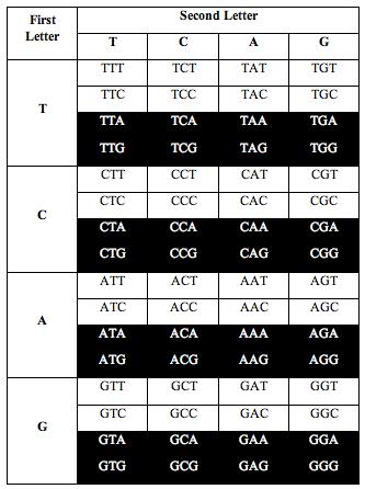tcag_symmetry6
